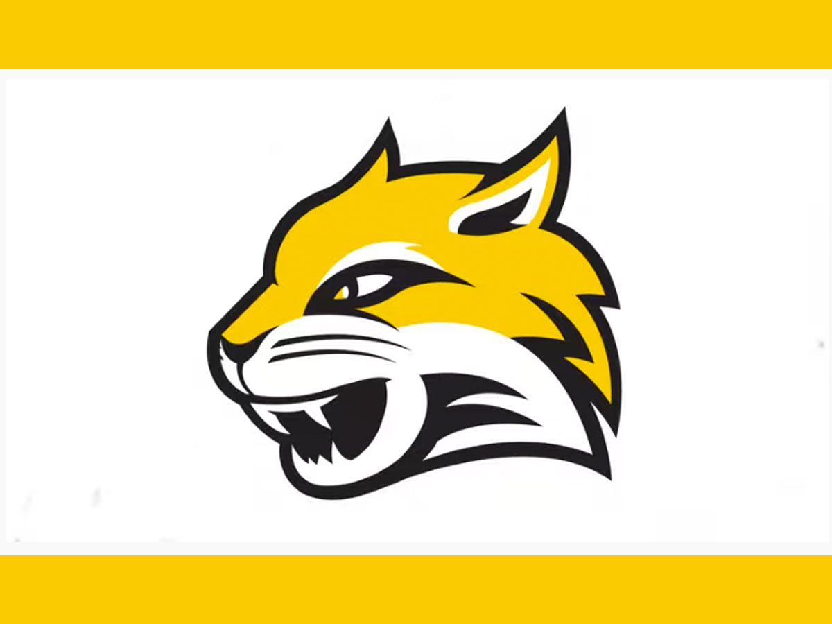 Wayne State College Reveals New Logo Nebraska Sports